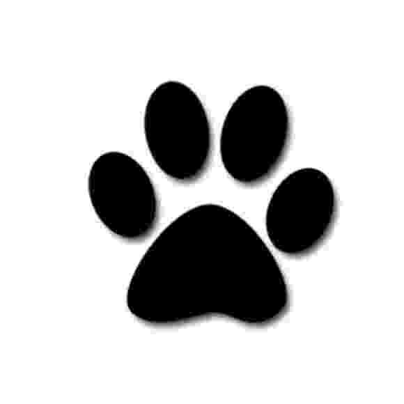 print a dog dog paw print template clipart best a print dog