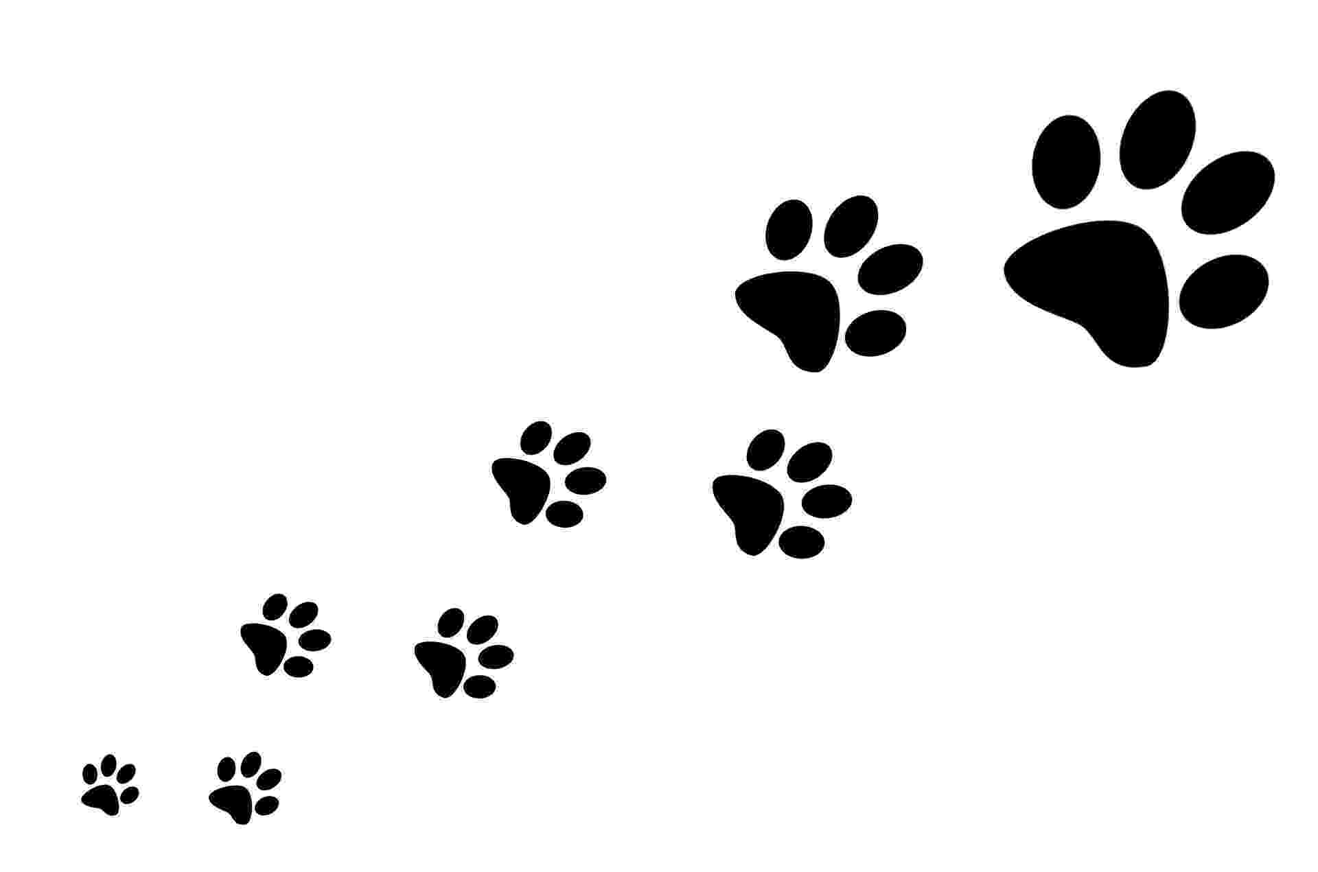 print a dog family paws sponsored dog walk in aid of the stratford dog a print