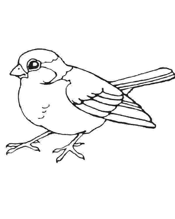 printable bird coloring pages bird coloring pages getcoloringpagescom bird coloring pages printable