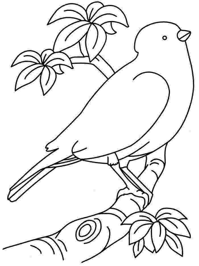 printable bird coloring pages free printable tweety bird coloring pages for kids printable pages bird coloring 1 1