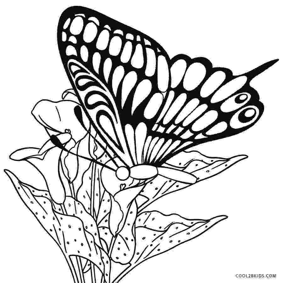 printable butterfly coloring page free printable butterfly coloring page ausdruckbare printable page coloring butterfly