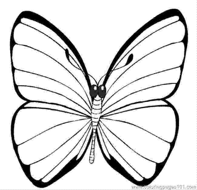 printable butterfly coloring page insect coloring pages best coloring pages for kids butterfly printable page coloring