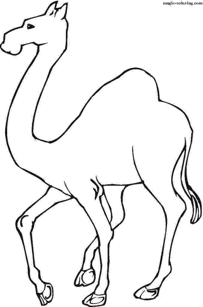 printable camel free printable camel coloring pages for kids printable camel 1 1