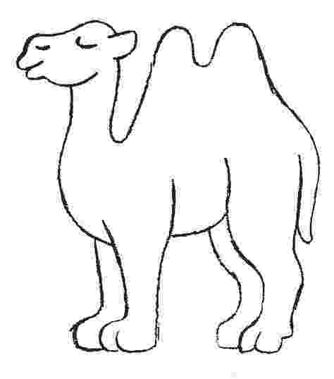 printable camel printable picture of a camel camel coloring pages camel printable