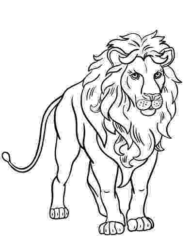printable coloring pages lion printable the lion king coloring pages lion coloring printable pages