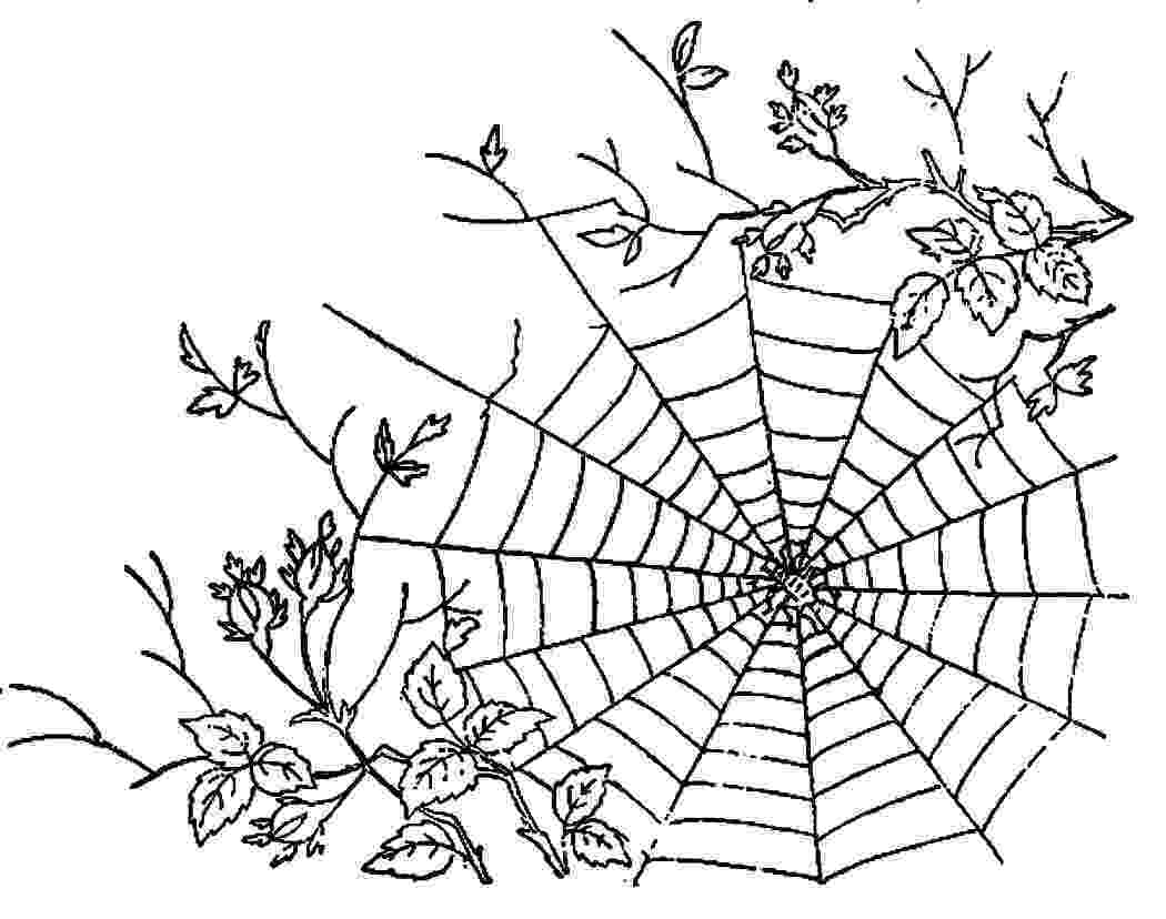printable coloring pages websites spider in web drawing at getdrawingscom free for pages coloring websites printable