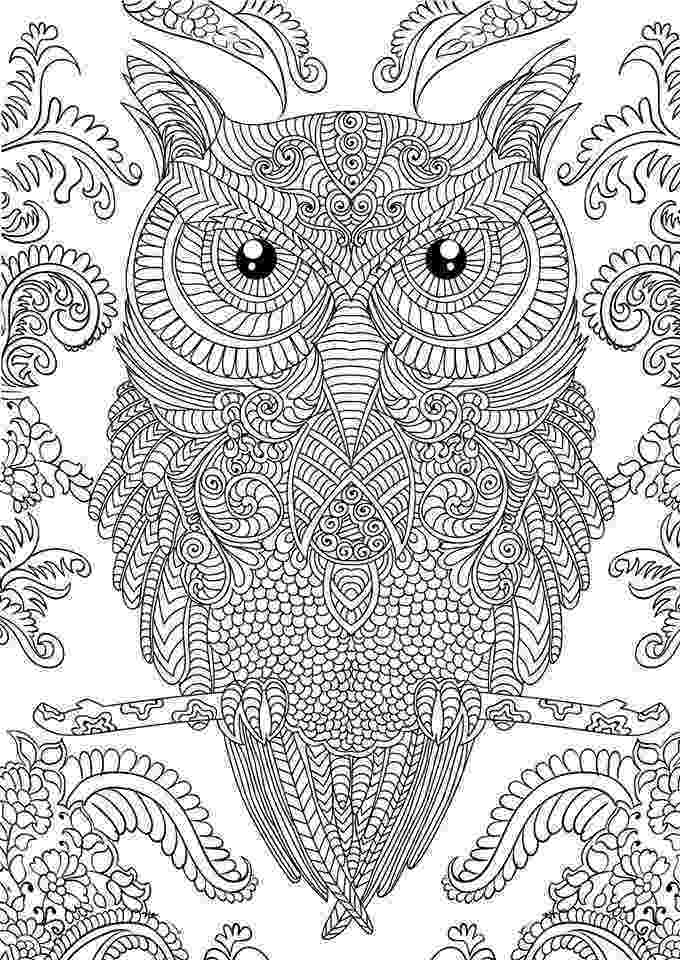 printable detailed coloring pages 10 difficult owl coloring page for adults with images pages coloring detailed printable