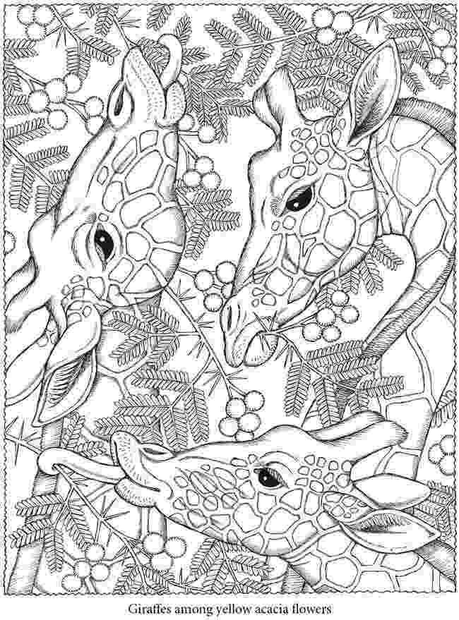 printable detailed coloring pages 50 printable adult coloring pages that will make you feel pages detailed printable coloring