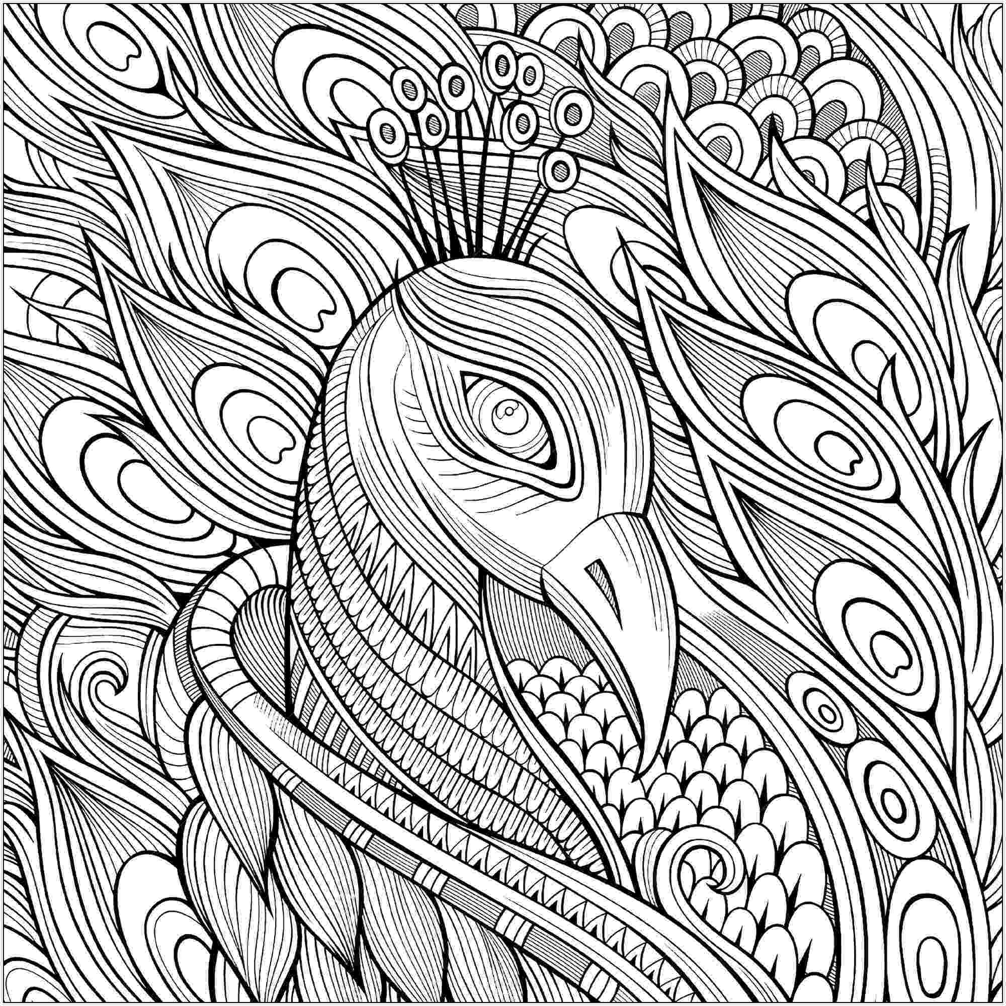 printable detailed coloring pages peacocks to print for free peacocks kids coloring pages detailed printable coloring pages