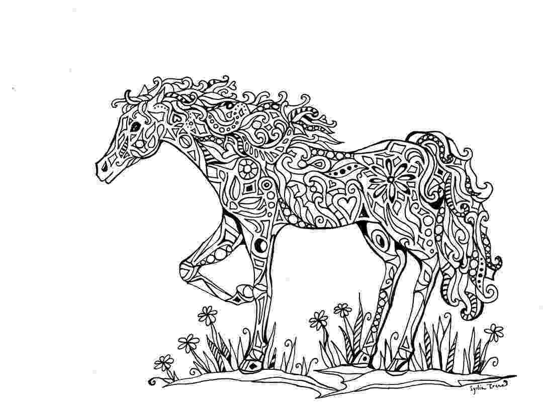 printable horse coloring pages for adults coloring pages for adults horses at getcoloringscom adults printable for pages horse coloring