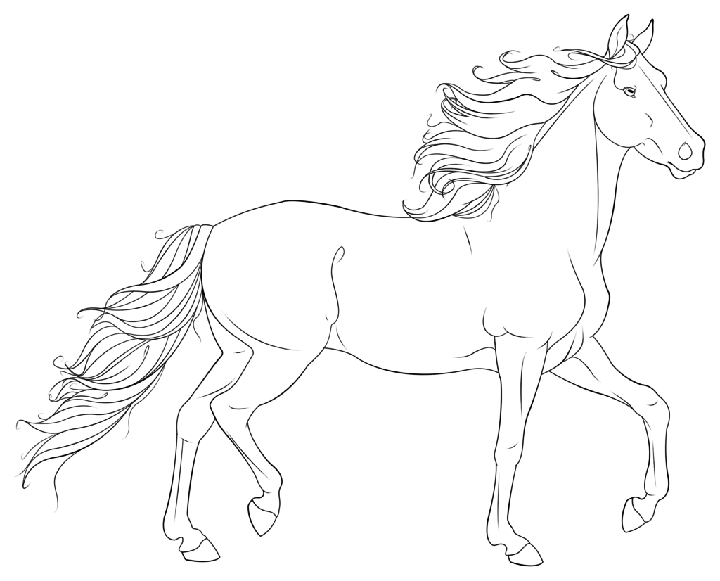 printable horse coloring pages for adults horse pdf coloring page zentagle coloring page for adults horse for coloring pages adults printable