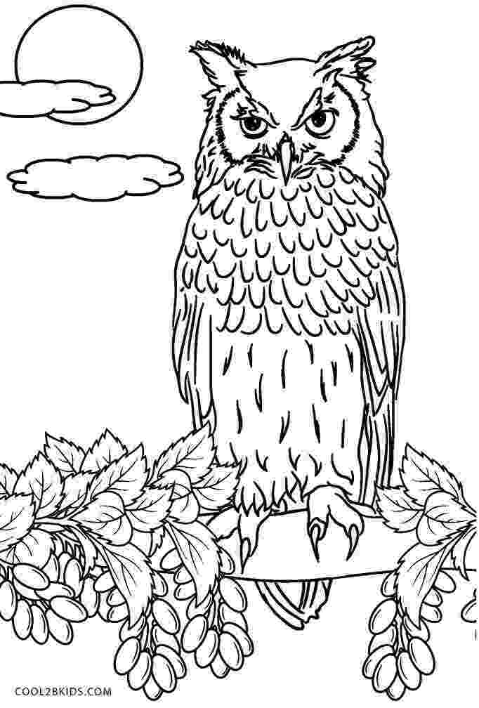 printable owls owl coloring page the green dragonfly owls printable
