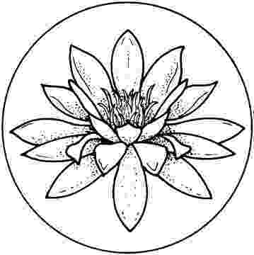 printable pictures of lilies lily 19 אומנות דפי צביעה flower coloring pages lilies pictures of printable