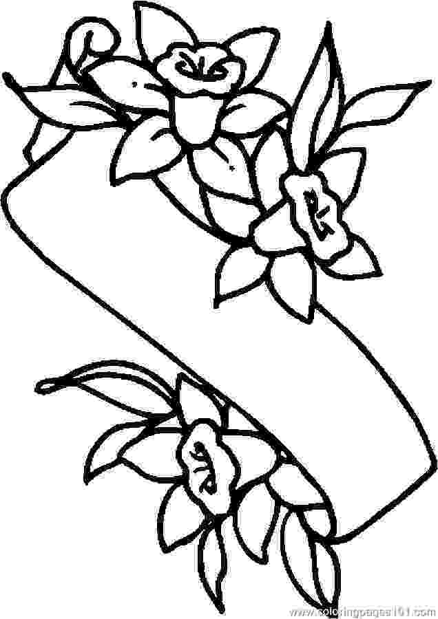 printable pictures of lilies lily coloring pages to download and print for free lilies pictures printable of