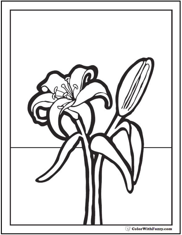 printable pictures of lilies lily coloring pages to download and print for free pictures printable lilies of