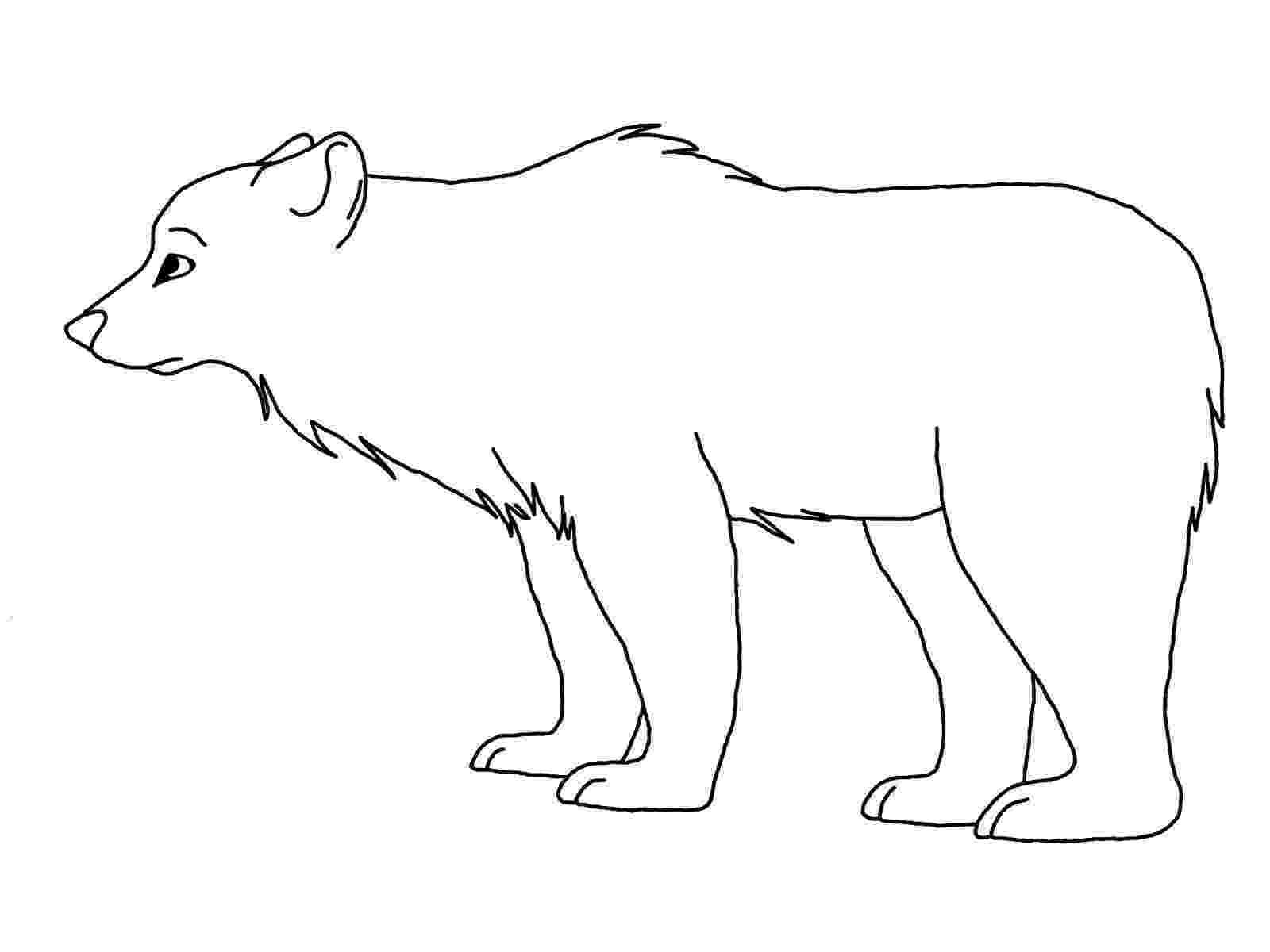 printable polar bear free printable polar bear coloring pages for kids polar printable bear