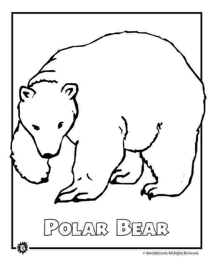 printable polar bear polar bear bear coloring pages polar bear coloring page printable polar bear