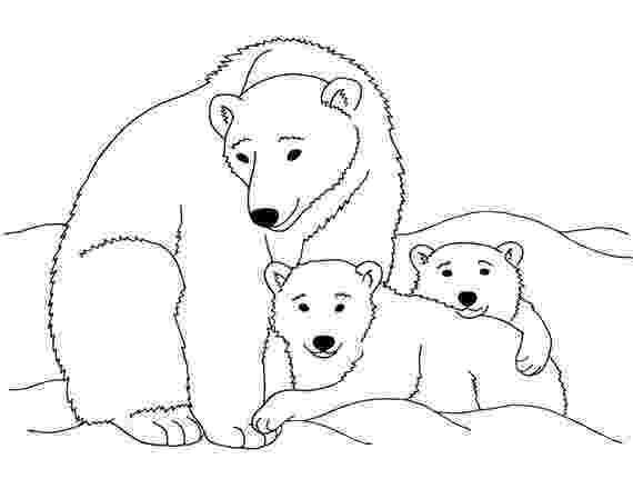 printable polar bear polar bear free printable templates coloring pages polar bear printable