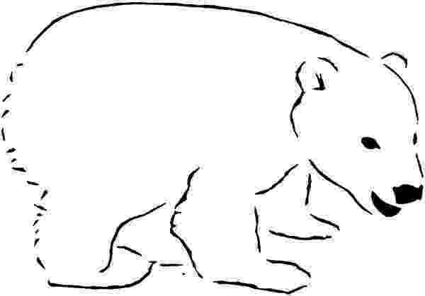 printable polar bear polar bear pics for kids polar bear fat polar bear printable bear polar