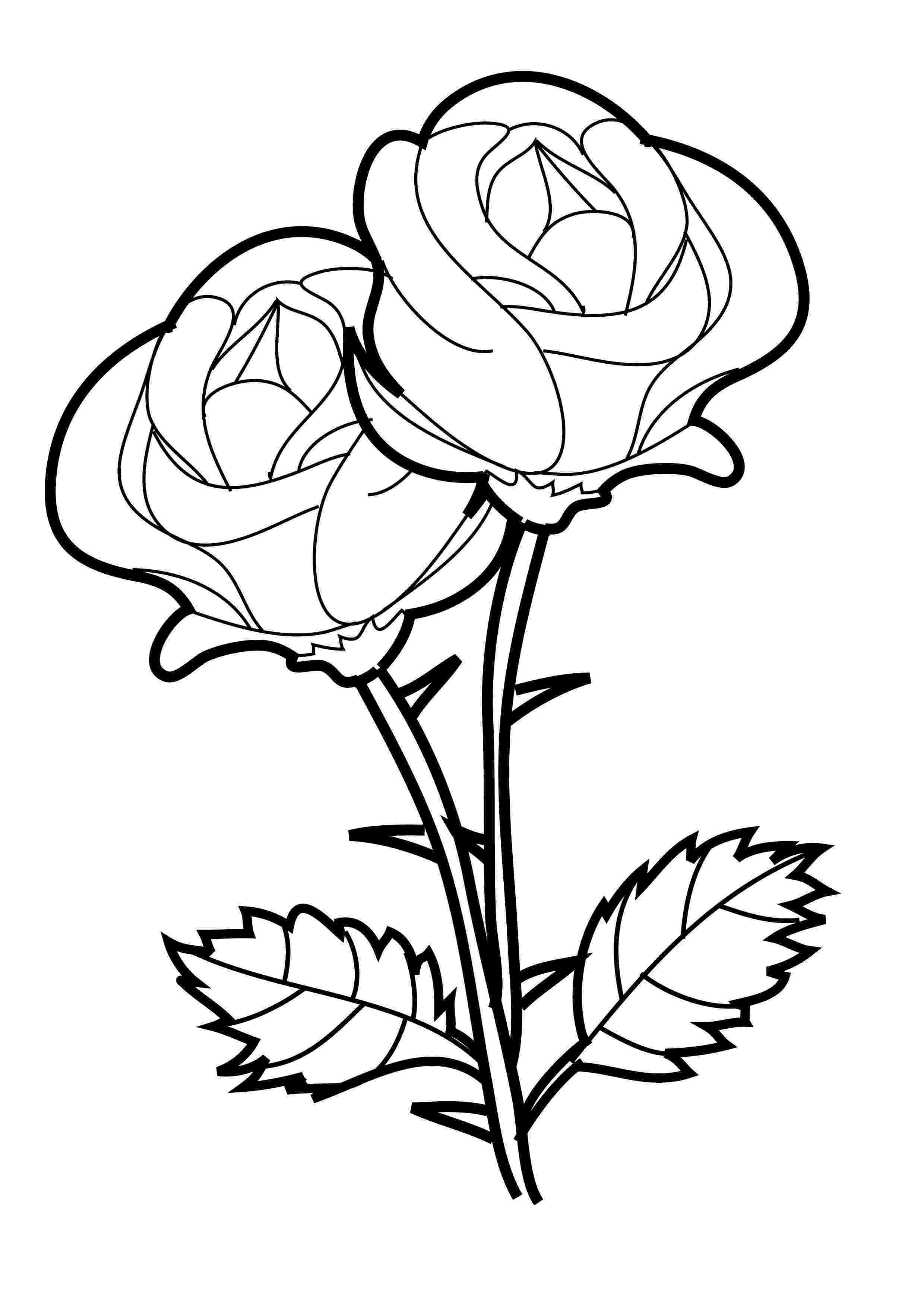 printable roses free printable roses coloring pages for kids printable roses