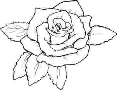 printable roses free printable roses coloring pages for kids roses printable 1 2