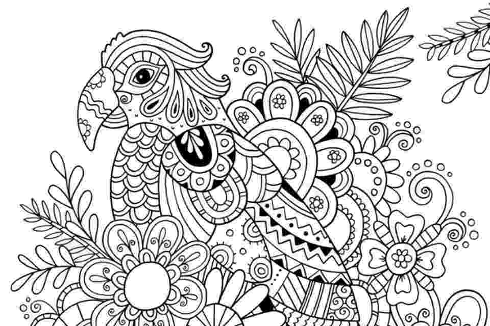 printable summer coloring pages for adults coloring pages printable pages summer for adults coloring