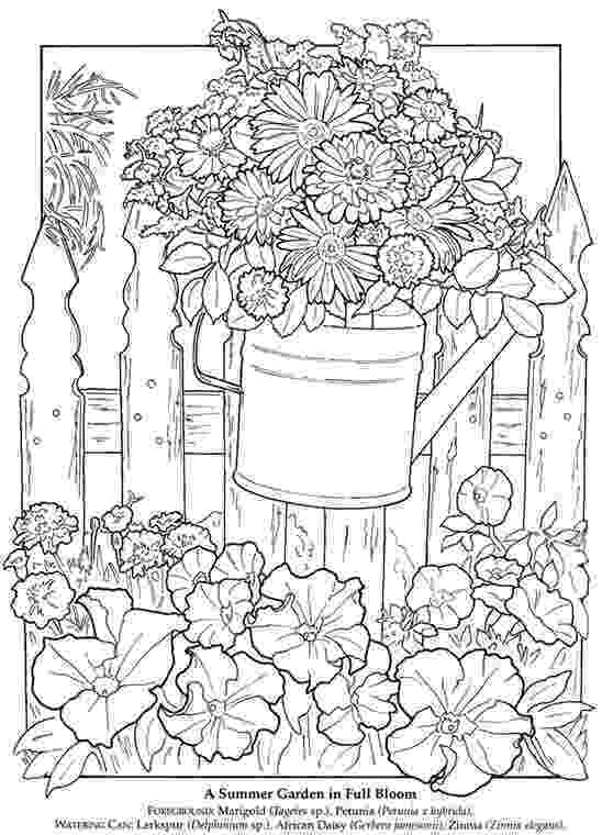 printable summer coloring pages for adults watering can bouquet summer coloring pages coloring printable for adults coloring pages summer