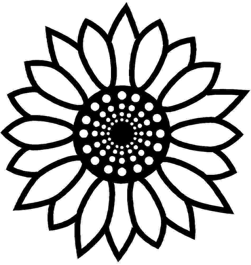 printable sunflower pictures to color helianthus or sunflower colouring pages picolour pictures to sunflower color printable