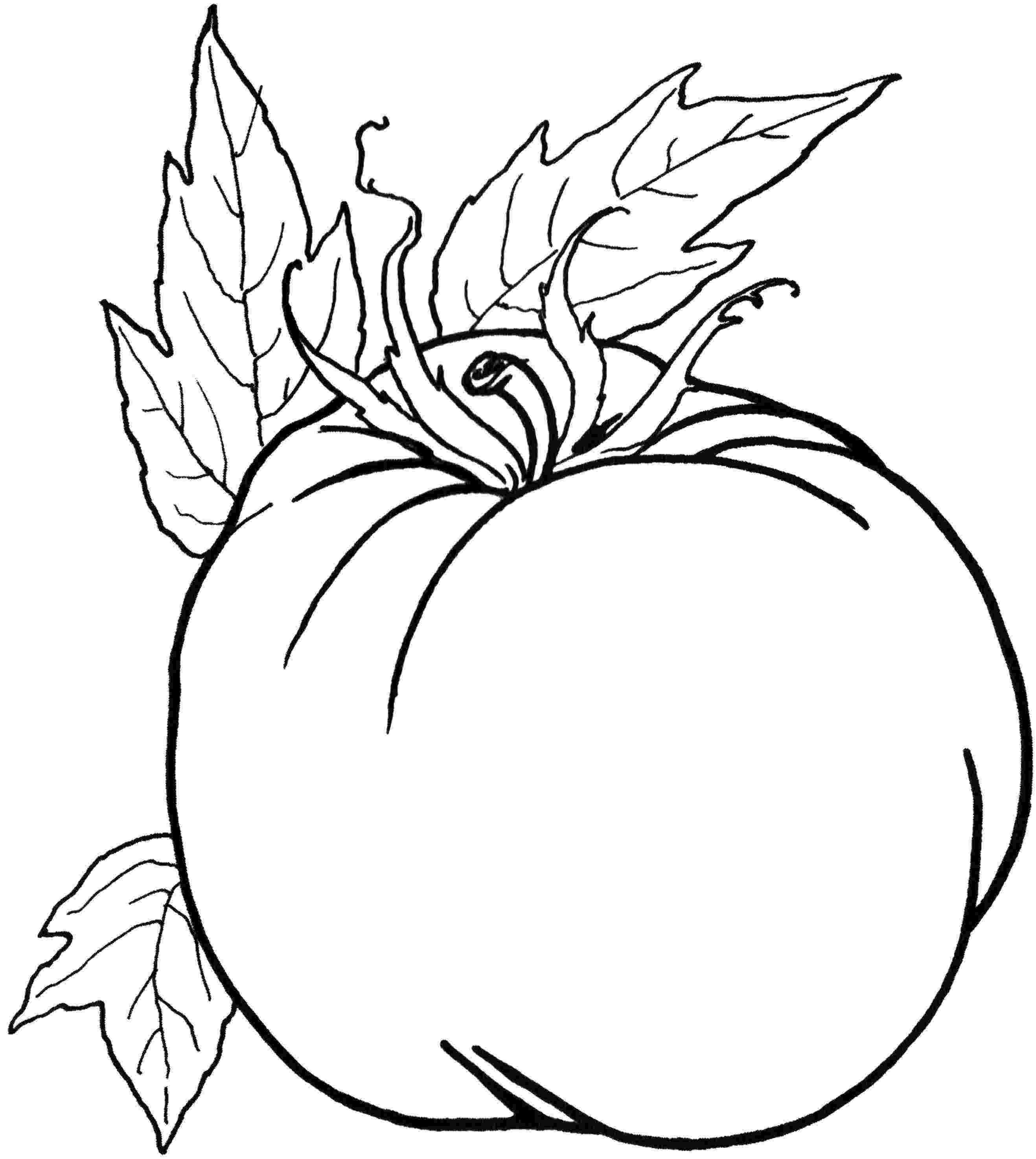 printable vegetables vegetable coloring pages vegetable coloring pages vegetables printable