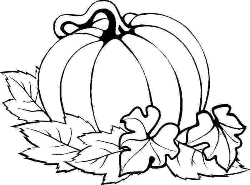 pumpkin coloring sheets printable pumpkins coloring pages to celebrate thanksgiving learn printable sheets coloring pumpkin