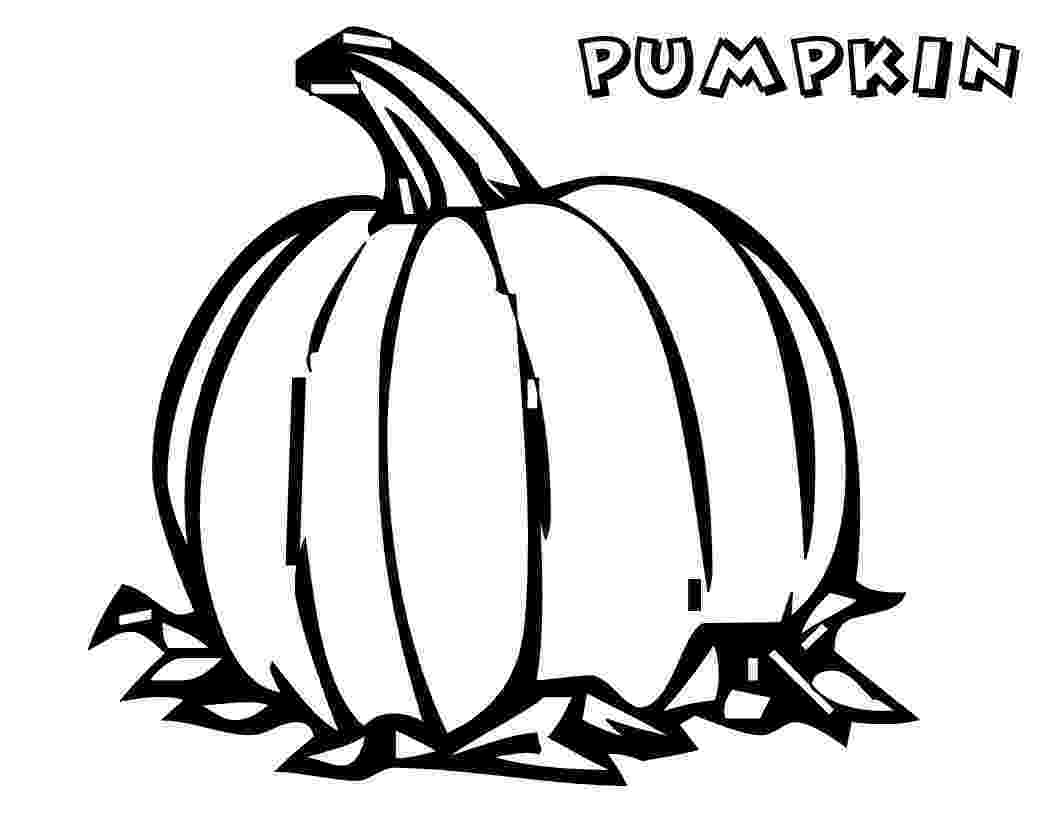 pumpkin pictures to colour free printable pumpkin coloring pages for kids colour pictures to pumpkin