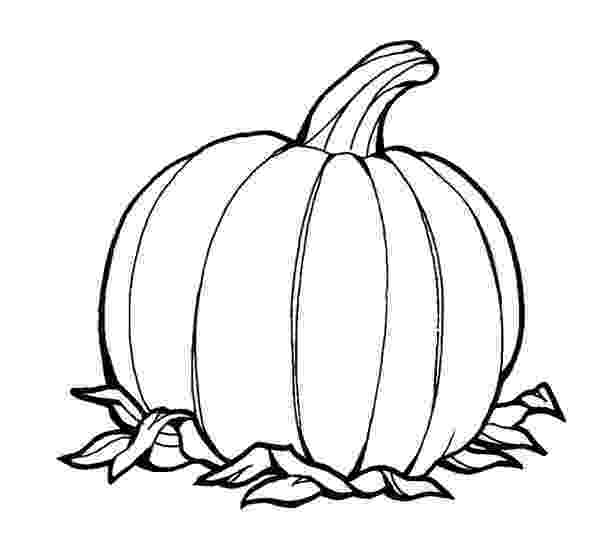 pumpkin pictures to colour free printable pumpkin coloring pages for kids pictures to colour pumpkin