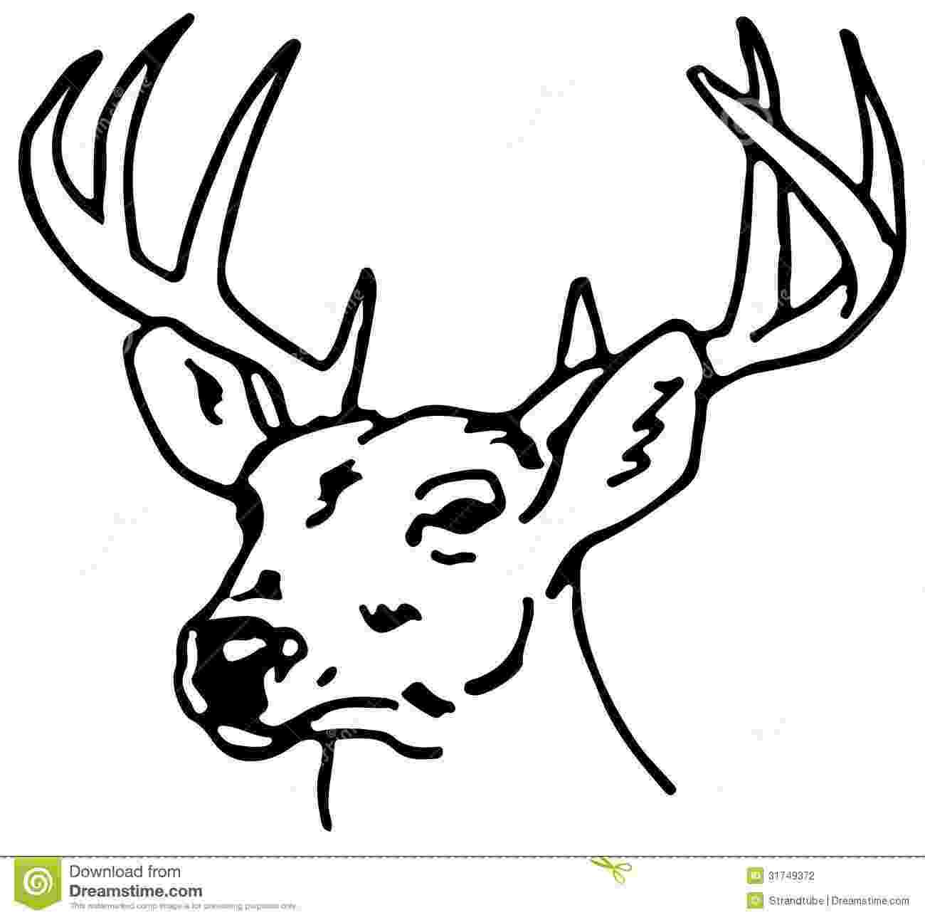 raindeer sketch learn how to draw a reindeer wild animals step by step sketch raindeer