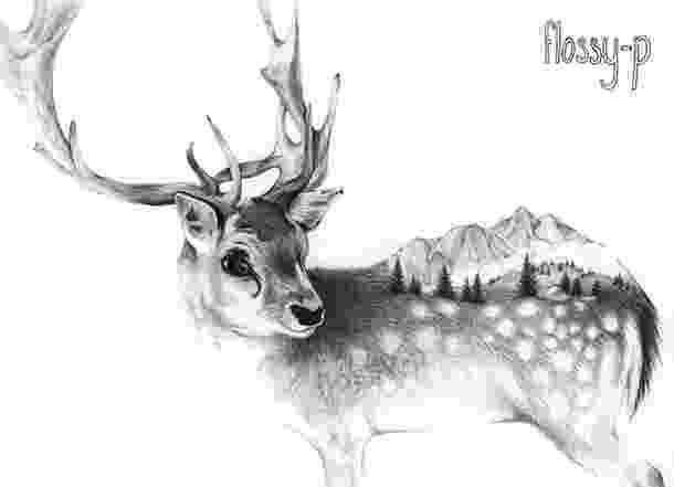 raindeer sketch reindeer drawing by scott woyak raindeer sketch