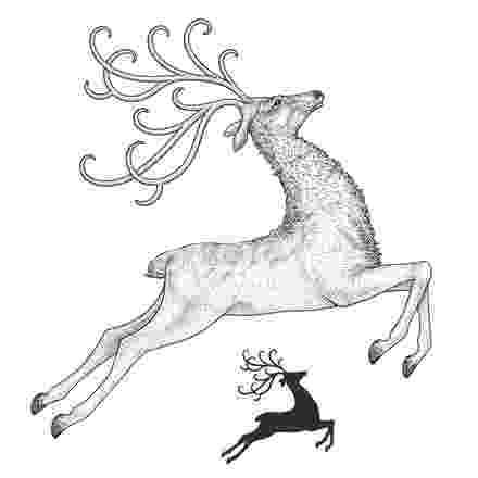 raindeer sketch reindeer lineart by rpgirl on deviantart raindeer sketch