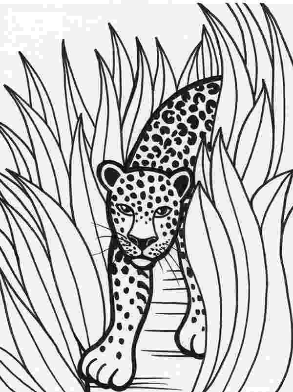 rainforest animals coloring book leopard rainforest predator coloring page download coloring rainforest animals book