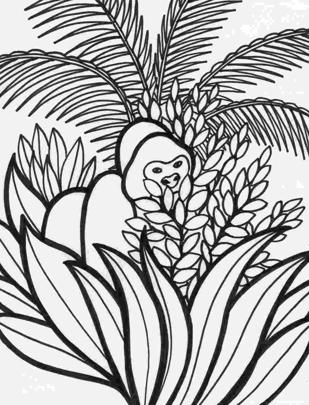 rainforest animals coloring book rain forest coloring pages k 3 coloring sevierville tennessee book coloring rainforest animals