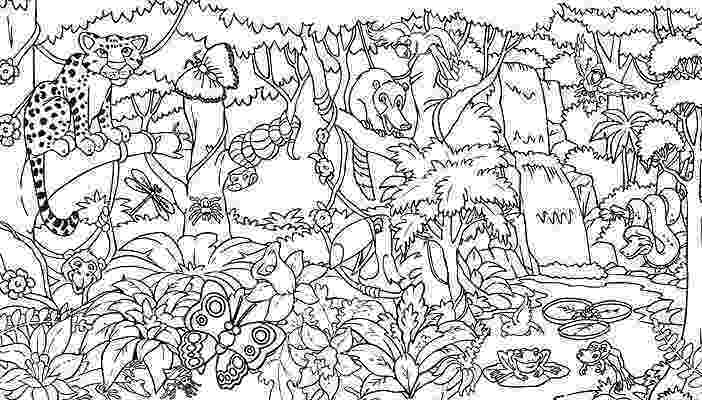 rainforest animals pictures to print the daily art of lemurkat colouring pages pictures animals rainforest to print
