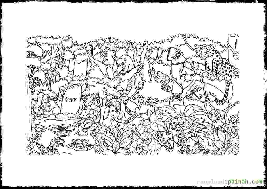 rainforest coloring pages habitats of the world activity coloring pages rainforest