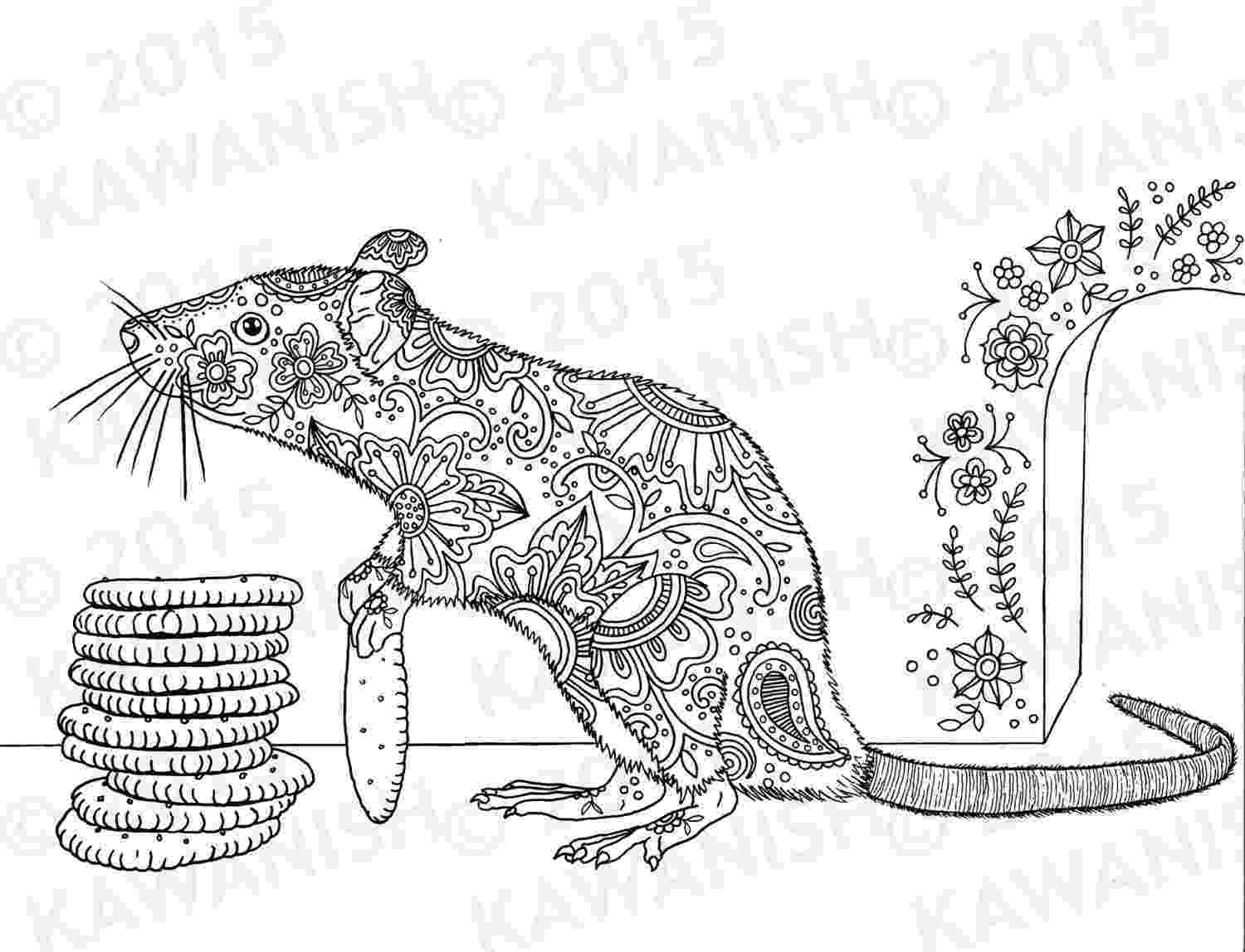 rat pictures to color top 10 rat coloring pages for little ones dog coloring pictures rat to color