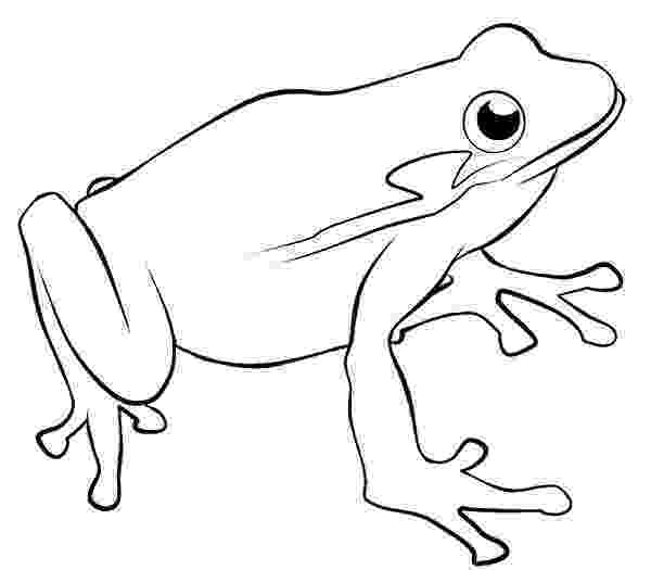 real animal coloring pages animal coloring pages that you can color for real with pages animal real coloring
