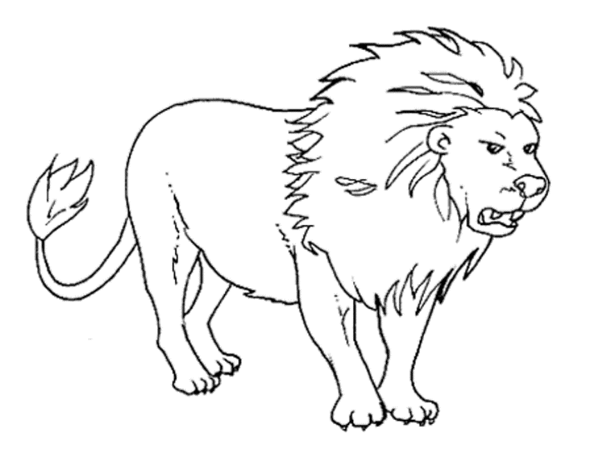 real animal coloring pages real animal coloring pages coloring home coloring pages real animal