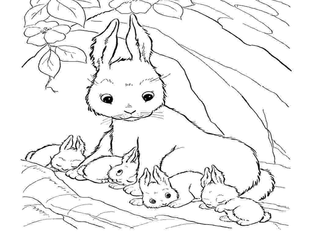 realistic coloring realistic puppy coloring pages download and print for free realistic coloring 1 1