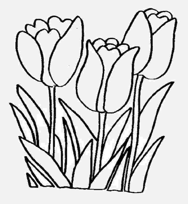 realistic flower coloring pages 127 best images about coloring pages flowers on pinterest realistic flower coloring pages