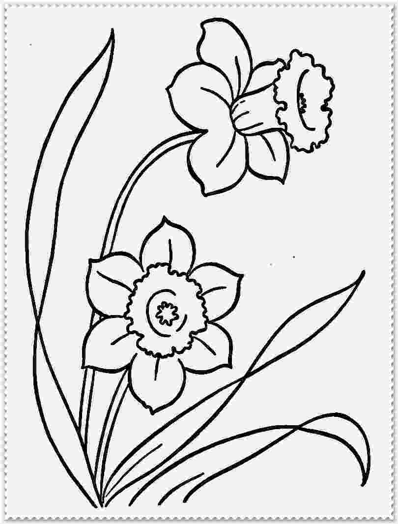 realistic flower coloring pages realistic flower coloring pages coloring home pages coloring flower realistic