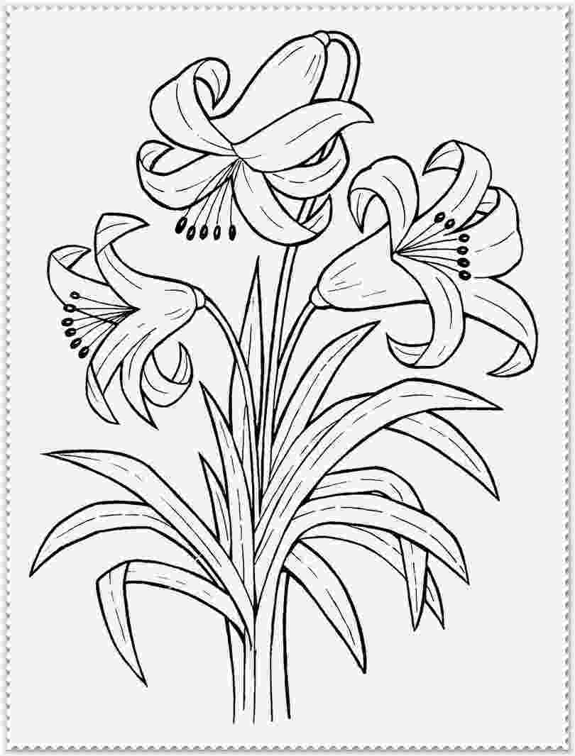 realistic flower coloring pages realistic flower drawing at getdrawings free download flower realistic coloring pages