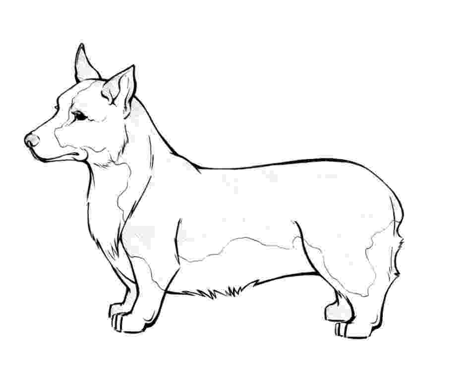 realistic puppy coloring pages corgi coloring pages download and print for free puppy coloring realistic pages