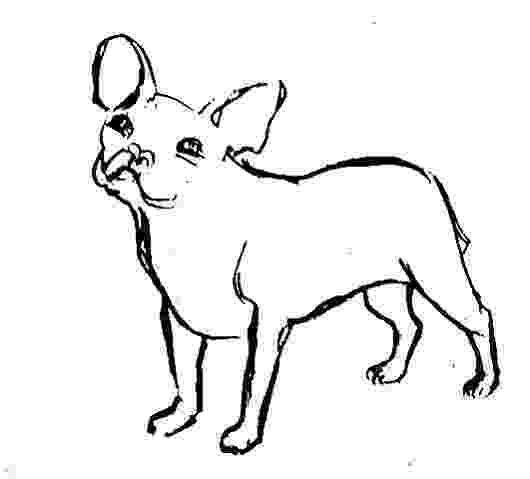 realistic puppy coloring pages dog my coloring land coloring puppy pages realistic