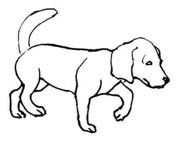 realistic puppy coloring pages printable puppy coloring pages for kids cool2bkids puppy realistic coloring pages