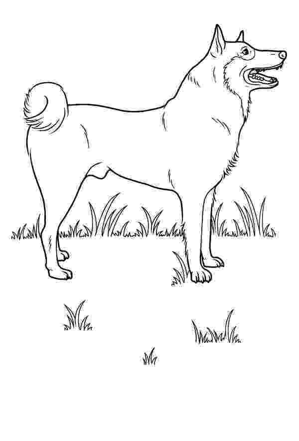 realistic puppy coloring pages realistic dog coloring pages coloring home puppy coloring pages realistic